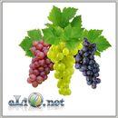 Виноград (eliq.net) - жидкость для заправки электронных сигарет