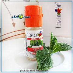 10 мл Spearmint, спирминт, мята. FlavourArt - ароматизатор для самозамеса. FA Италия.