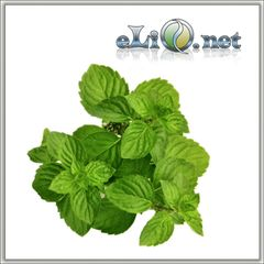 Lime - mint ароматизатор для самозамеса. Inawera