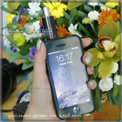 Vision VapeCase 2000mAh li-ion Variable Voltage MOD kit for iPhone 5&5S. Кейс - варивольт
