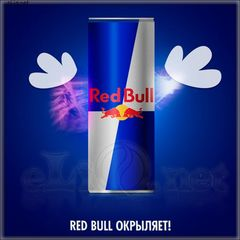 Red Bull - энергетический напиток - fl. HC