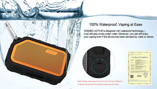 водонепроницаемый Wismec Active 80W Box Mod фото